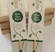 comprar lápices plantables en Valencia