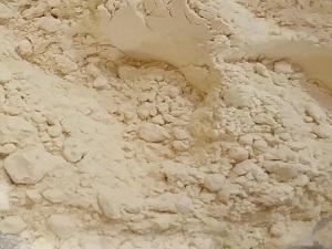 comprar cebolla en polvo a granel en Valencia