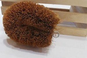 comprar cepillo de coco en Valencia