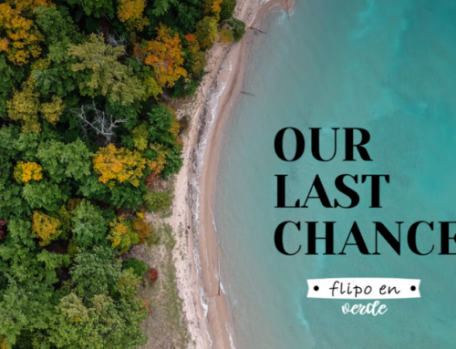 Our last Chance!